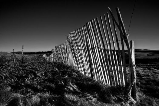 Fence Lac Pavin France by Phil-Norton