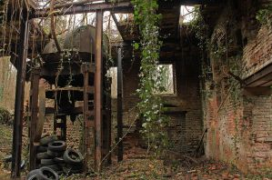 ivy and rust by leChatdeChester