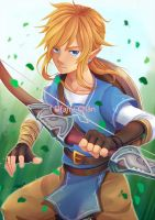 Legend of Zelda - Link by Elfany-Chan