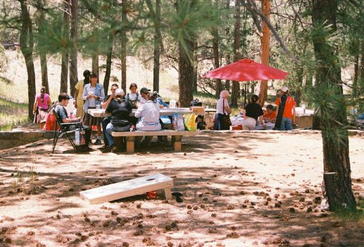 4th of July Picnic by Texas1964