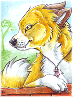 ACEO_ElementalSpirits2 by Kyuubreon