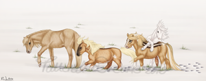 Miniature Herd by Tattered-Dreams