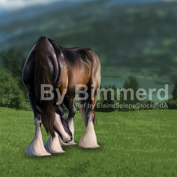 Clydesdale by Bimmerd