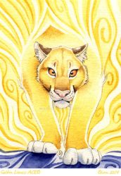 ACEO Golden lioness by olvice