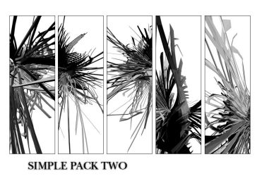 SIMPLE PACK TWO by elic
