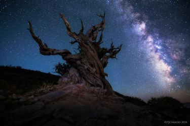 Guardian Of The Galaxy by PeterJCoskun