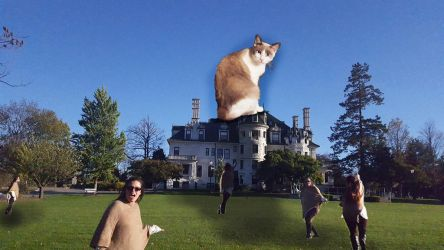Attack of the Giant Kitty at school photo collage by lollypop081