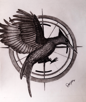 The Hunger Games Series: Catching Fire by Darpansinghh