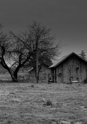 A somber land... by thewolfcreek