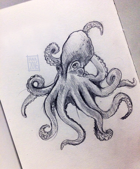 octopus by Iraik