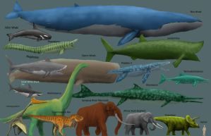 DRAFT Megafauna Chart by Harry-the-Fox