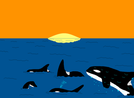 Orcas by Tyler3967