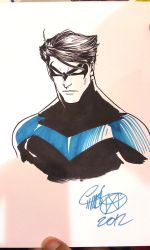 ECCC - Nightwing by theCHAMBA