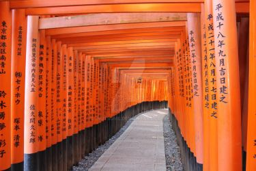 Torii-Tunnel by InuTsume