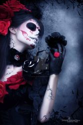 Rose of the death 2013 by lartist-retouche