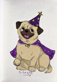Pug wizard by Siilin