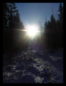 Cold and Sunny by Regda