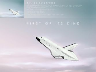 first of it's kind by hermik