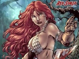 Red Sonja by Ed Benes w01 by batwolverine