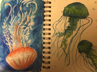 Jellyfish Sketchbook Pages by Ascended-Fox