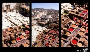 Fez: Leather Tanneries by Mgsblade