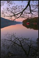 Coniston Water Dawn by Peteclark89