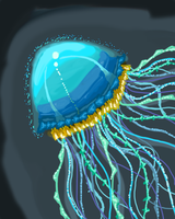 Jellyfish by IsaacChamplain