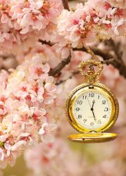 .:: Spring Time ::. by Whimsical-Dreams