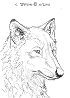 Wolf Sketchy Doodle Thing by WindSeeker
