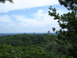 Tikal Temple IV Top View by MexicanGuy
