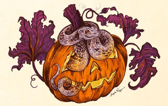 Snake Pumpkin by AngelaRizza