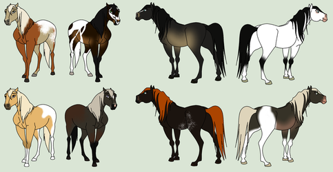 Point Adopts 4 by horsegirl121