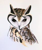 Owl by ScarlettRoyale