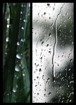 My last summer rain by LoneEarthling