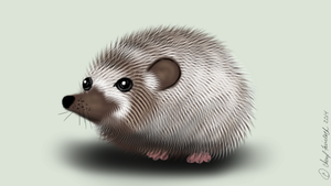 Hedgehog by Faircloth-DigiTalArt