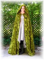 Elven Hunting Gown + Cloak by Liquidfire3