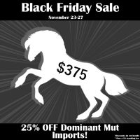 Nordanner Black Friday Ad3 by s1088