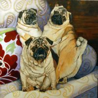 3 pugs on a chair by SusanNewman1