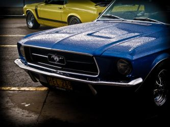 Blue Mustang. by onyxcomix