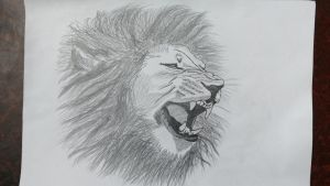 Lion Roaring! by Nikhilraj94