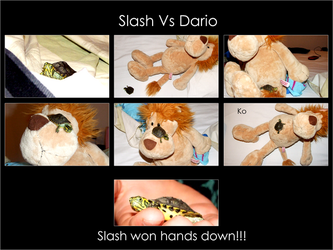 Slasho VS Dario by MrNoSocks