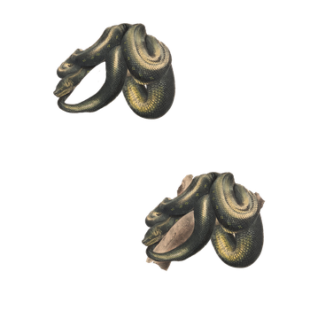Snake with and without Limb PNG by chaseandlinda