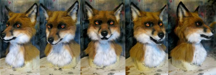 Red fox 2014 by Crystumes