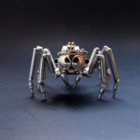 Watch Parts Jumping Spider No 1 by AMechanicalMind