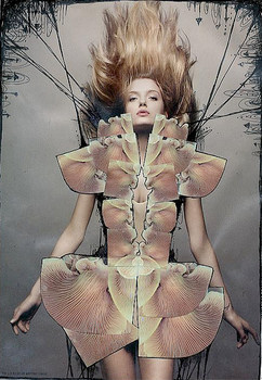 Fashion Illustration Fungi by rosiegoldfish