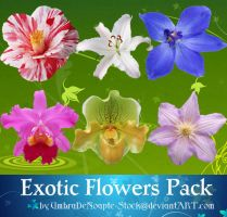 Exotic Flowers Pack by UmbraDeNoapte-Stock