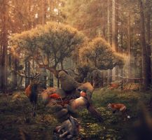 Somhere in the deep forest by JotVelZet