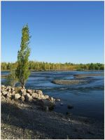 River Limay... by mirator
