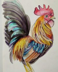 #67 Cocky Rooster by ComposedLines