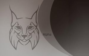 L.LYNX WALLPAPERS 6 by washufeng